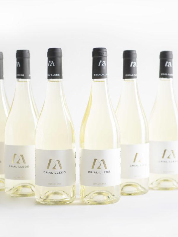 Lote vino blanco joven